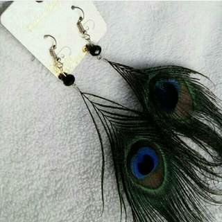 Anting Bulu Merak
