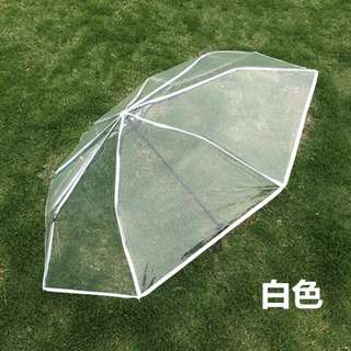 transparent umbrella with white outlines