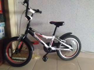 Kids Bicycle GIANT