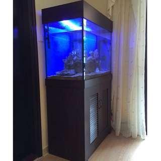[出讓] 放售3尺魚缸 連全套養鹹水魚系統