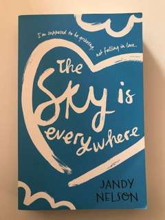 Jandy nelson books- i'll give you the sun, the sky is everywhere