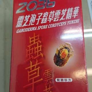 2036靈芝孢子蟲草雲芝精華