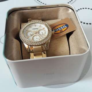 Authentic Fossil for Her
