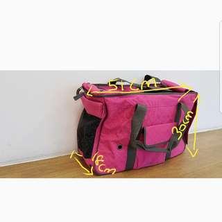 Pet carrier/bag