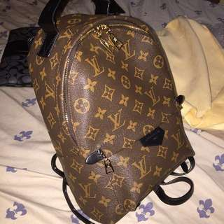 Louis Vuitton Palm Spring Backpack PM