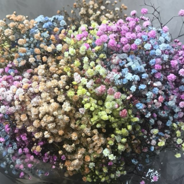 Colourful Baby Breath Hand Bouquet