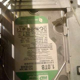 Western Digital Caviar Green 1TB hard disk drive HDD