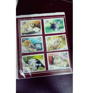 Postage Stamp -Cat Theme