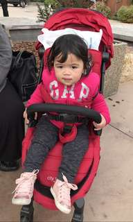 Compact Travel Stroller
