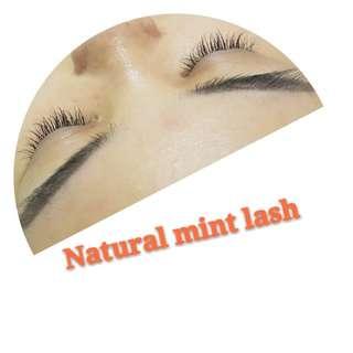 lash by Lash