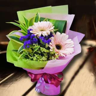 [FREE DELIVERY] Pink Gerberas Hand-bouquet (955-GB)