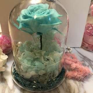 (現貨)Tiffany blue永生花