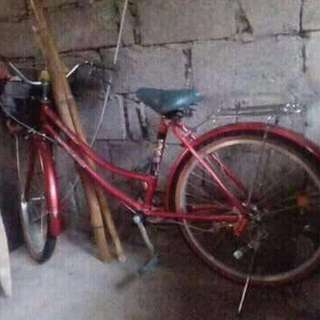 Korean bike