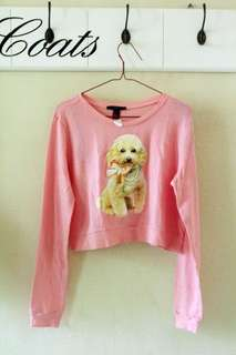 Pink Dogs Sweater