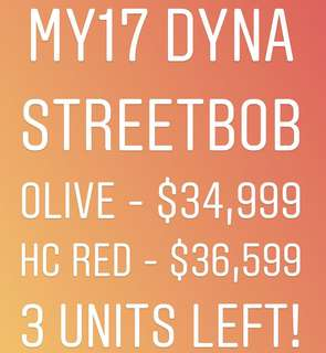 Promotion for Dyna StreetBob