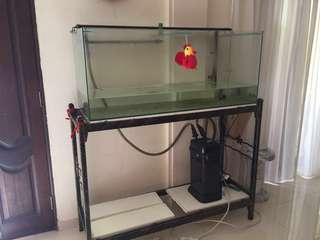 1meter Fish tank and stand fish pump - everything in photo