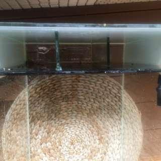魚缸 兩呎