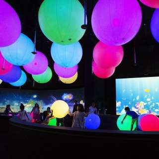 ART SCIENCE MUSEUM MBS (ART SCIENCE MUSEUM MARINA BAY SANDS)- FUTURE WORLD & DIGITAL LIGHT CANVAS