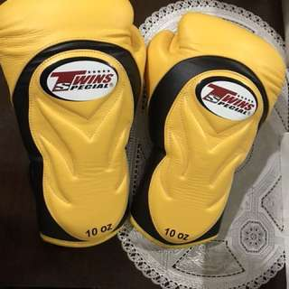 Gloves Twins Muaythai Boxing Special Edition