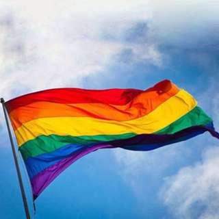 INSTOCKS Rainbow Gay Pride LGBT flag