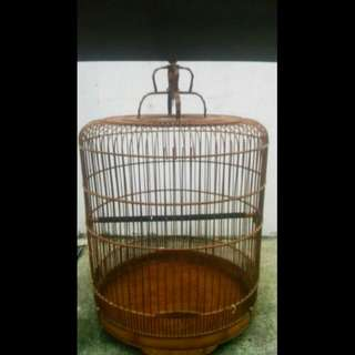 "Wtt 19"" cage for colourful finch"