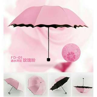 Beautiful and Durable Umbrella