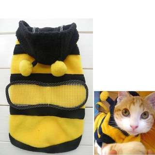 Pet Clothes