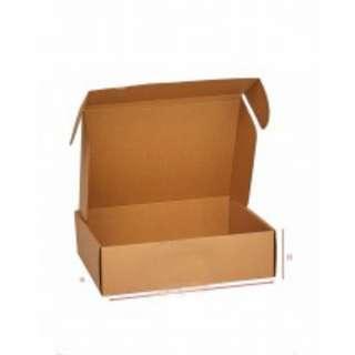 Carton-Document Box