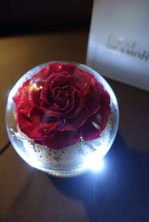 Rose De Amor 懸浮玫瑰星球