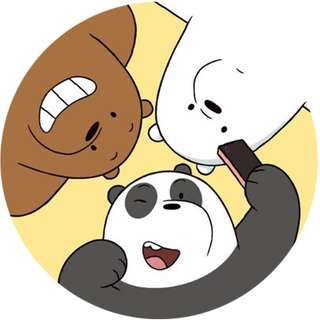 We Bare Bears Selfie