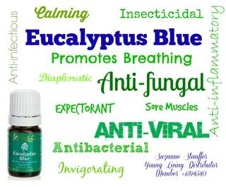 5ml Eucalyptus Blue Essential Oil
