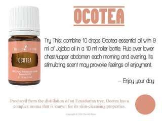 5ml Ocotea Young Living Essential Oil