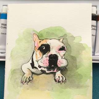 Greeting cards ( Bulldog)