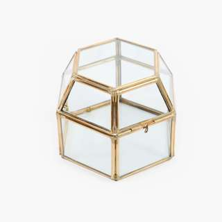 Hex Box Terrarium - Diameter 12 cm