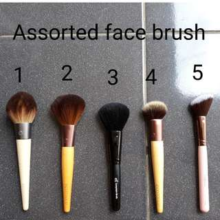 Assorted face brush