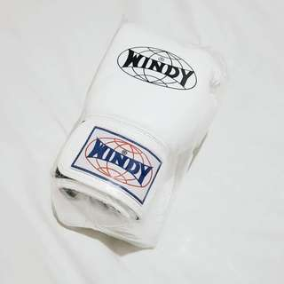 Windy Boxing Gloves 12oz