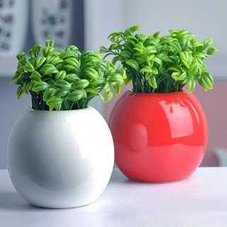 tumbuhan kacang artificial 10buah
