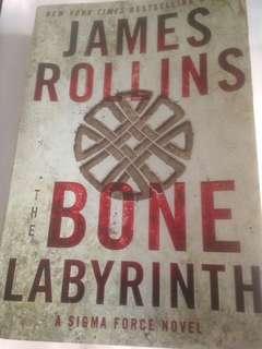 The Bone Labyrinth (A Sigma Force Novel) by James Rollins