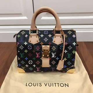 Louis Vuitton Multicolour Speedy
