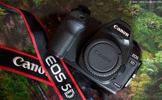 LOOKING FOR CANON 5D Mark II