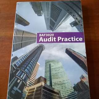 Audit Practice