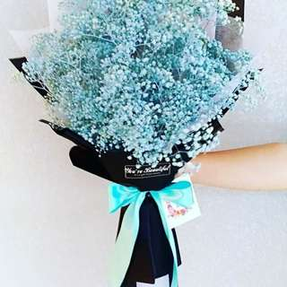 Sky blue baby breath