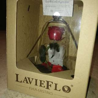 Lavieflo Rose Bell Jar