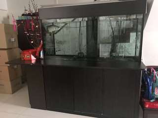 CR Aquarium Fish Tank L5ft x W2ft x H2.5ft