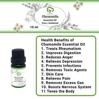 Chamomile Essential Oil | Pure | Undiluted