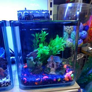 Aquarium set.