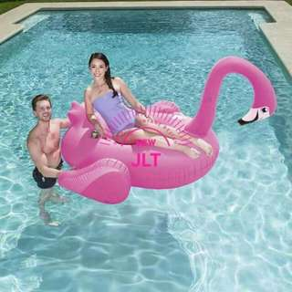Flamingo Floater