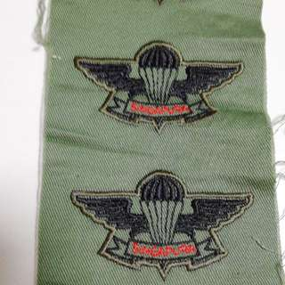 SAF Basic Airborne Wings Vintage Temasek Green
