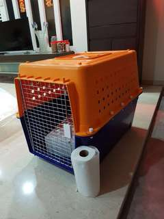 PP40 International Airline Approved Pet Carrier Crate