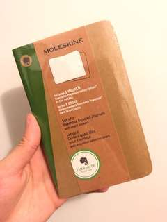 MOLESKINE Set of 2 Evernote Squared Journals with Smart Stickers